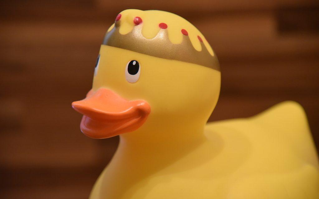 Königliche Ente: König bleibt sich treu