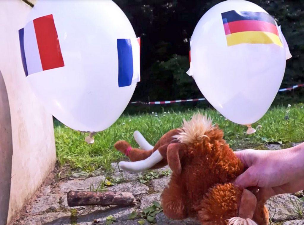 Die Entscheidung: Tinka geht mit ihren Stoßzähnen auf den Franzosen-Ballon los