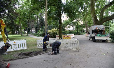 Es werde Licht im Hofgarten…
