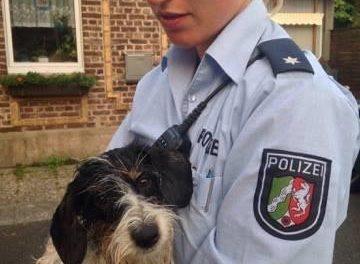 Polizisten retten vermissten Hund — Lucka und Herrchen wieder vereint