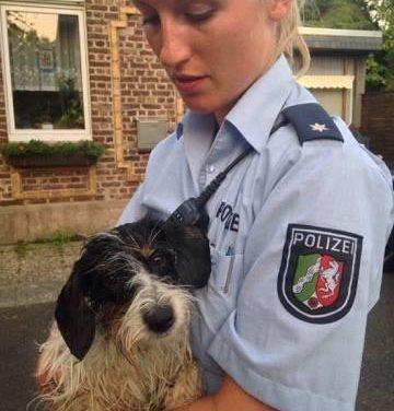 Polizisten retten vermissten Hund – Lucka und Herrchen wieder vereint
