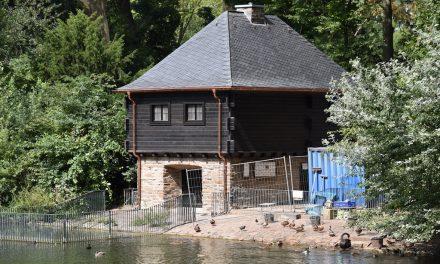 Schwanenhaus im Hofgarten fertiggestellt