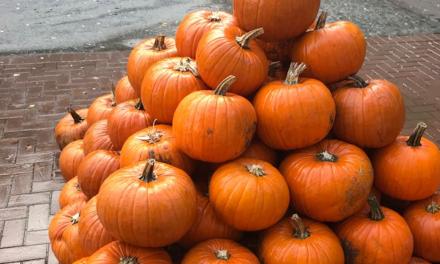 Halloween im Kurhaus im Volksgarten