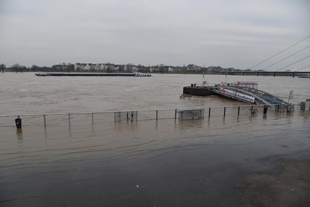 Rheinhochwasser 8. Jan. 2018 Foto: LOKALBÜRO