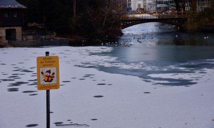 Väterchen Frost läßt Teiche zufrieren