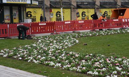 Pflanzarbeiten am Corneliusplatz