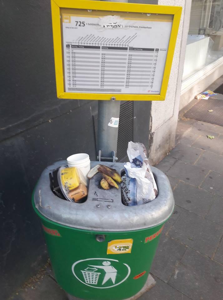 Stinkender Mülleimer Foto: Privat