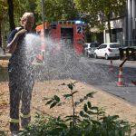 Feuerwehr unterstützt Gartenamt