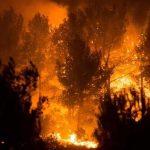 Erhöhte Waldbrandgefahr im Stadtwald