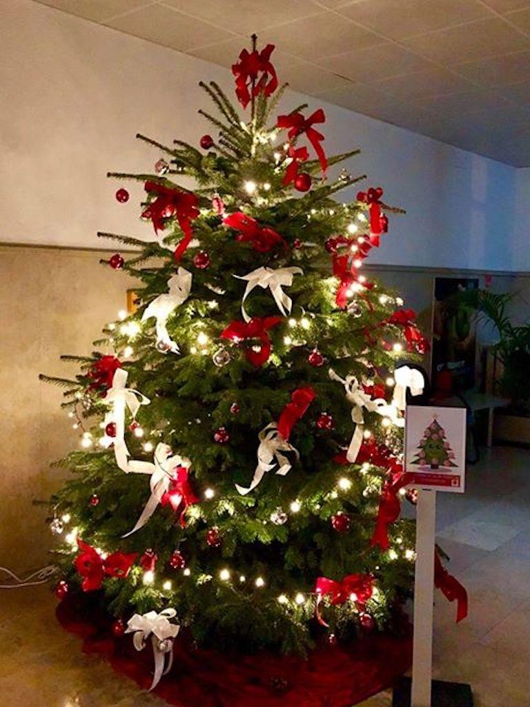 Fortuna Weihnachtsbaum bei der AOK Foto: AOK