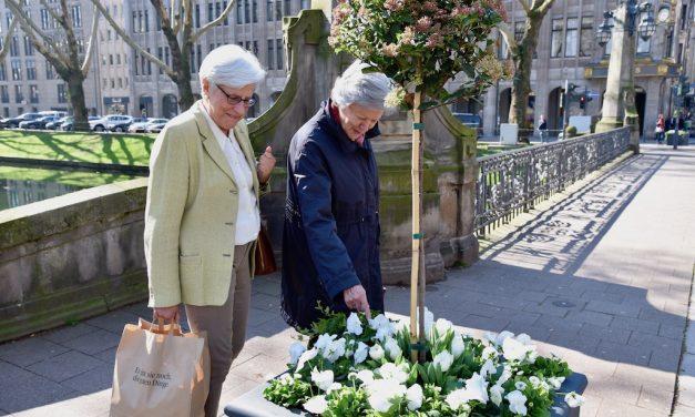 """Blumenpracht für die """"KÖ"""""""
