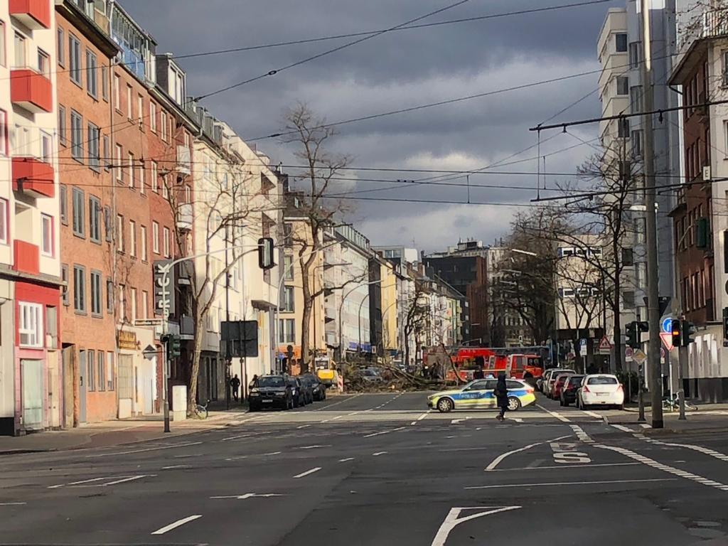 Sturmschaden in der Adlerstraße Foto: LOKALBÜRO