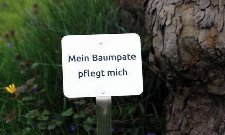 """""""Mein Baumpate pflegt mich"""""""