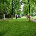 Hofgartenwege werden nach alten Plänen wieder angelegt