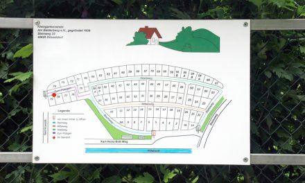 Rettungspläne für Düsseldorfs Kleingartenanlagen