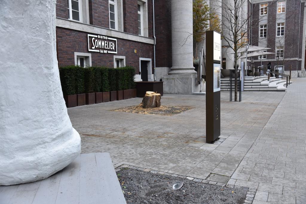 Baumfällung Andreas Quartier auf der Terrasse Foto:LOKALBÜRO