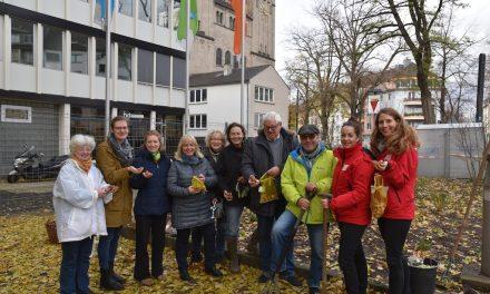 """""""Urban Gardening"""": Das neue Projekt von Pro Düsseldorf"""