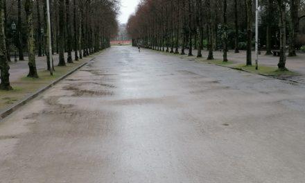 Jetzt offiziell: Auch Stadt kennt Reitallee nicht