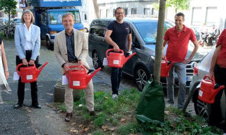 Anhaltende Trockenheit: Stadt gibt kostenlose Gießkannen und Wassersäcke aus