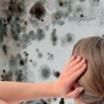 Feuchteschäden und Schimmelgefahr in Wohnungen