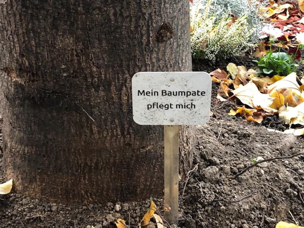 Impressionen von der Münsterstraße
