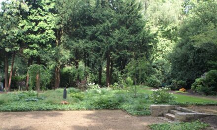 Neues Bestattungsangebot Parkwahlgrab auf dem Nordfriedhof