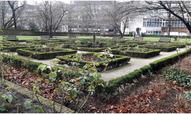 Frischer nährstoffreicher Boden für den Rosengarten