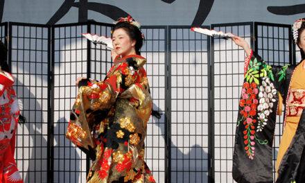 Japantag erneut abgesagt