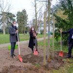 Fast 13.000 Bäume und Forstpflanzen für Düsseldorf