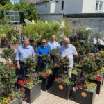 500 Blumenoasen für die Stadtteile