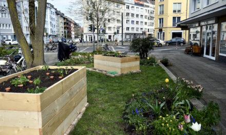 Ein Hochbeet für den Carl-Mosterts-Platz