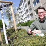 Gartenamt bewässert Bäume und gibt Gießsäcke an interessierte Düsseldorfer aus