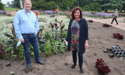 100.000 Sommerblumen für Düsseldorf