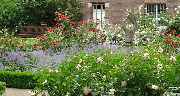 Stadt vergibt Patenschaften für Rosengarten in der Carlstadt