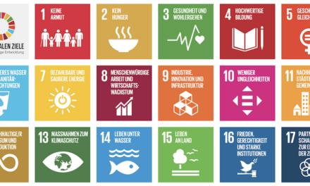 Düsseldorfer Organisationen machen sich gemeinsam stark für Nachhaltigkeit
