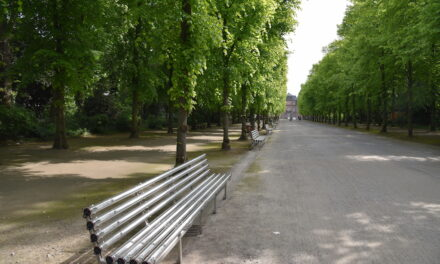 Lichtbänke sollen im Herbst saniert in den Hofgarten zurückkehren