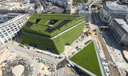"""""""Einfach Grün. Greening the City"""" – Ausstellung zur Bedeutung des städtischen Grüns"""