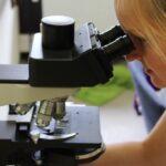 Mikrokosmos Kleingewässer — Workshop für Erwachsene im Aquazoo