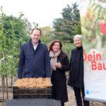 """Aktion """"Dein Baum"""": Gartenamt stellt 200 Bäume für private Gärten in Düsseldorf bereit"""