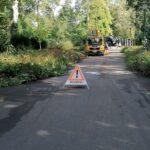 Baumfällungen und Gehölzschnittarbeiten des Gartenamts
